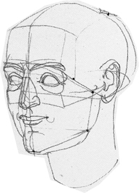 Head study in drawing materials: architecture of the head.